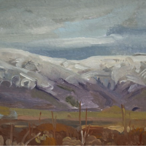 In snow, Iceland, artist residency, Andrea Krupp, painting in Iceland